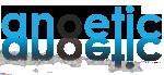 Anoetic Support Portal